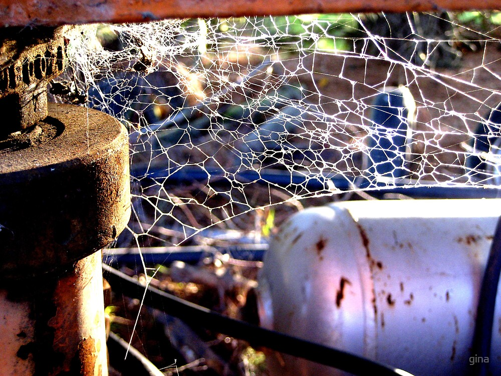 rust and web by gina