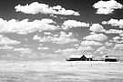 Prairie Home by Nate Welk
