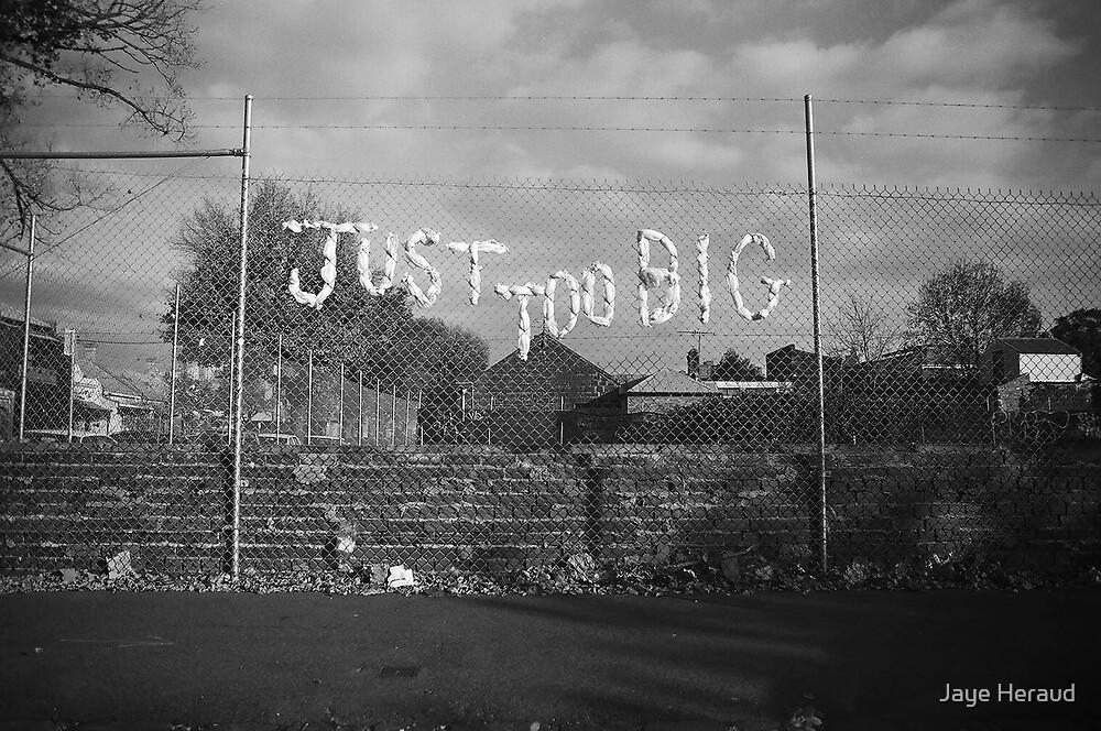 Big Enough by Jaye Heraud