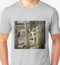 Timber Wolf Between the Trees Unisex T-Shirt