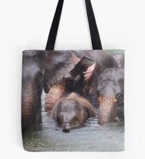 Elephant family 2 Tote Bag