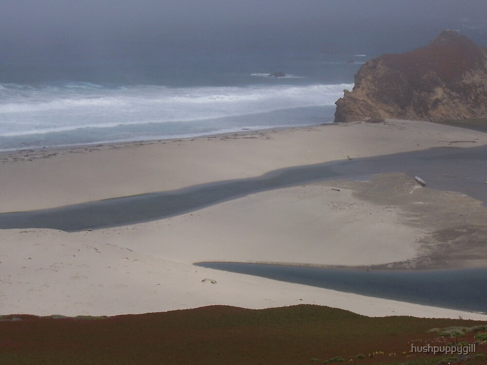 Tide-pools by hushpuppygill