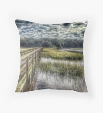 Old House Creek Throw Pillow