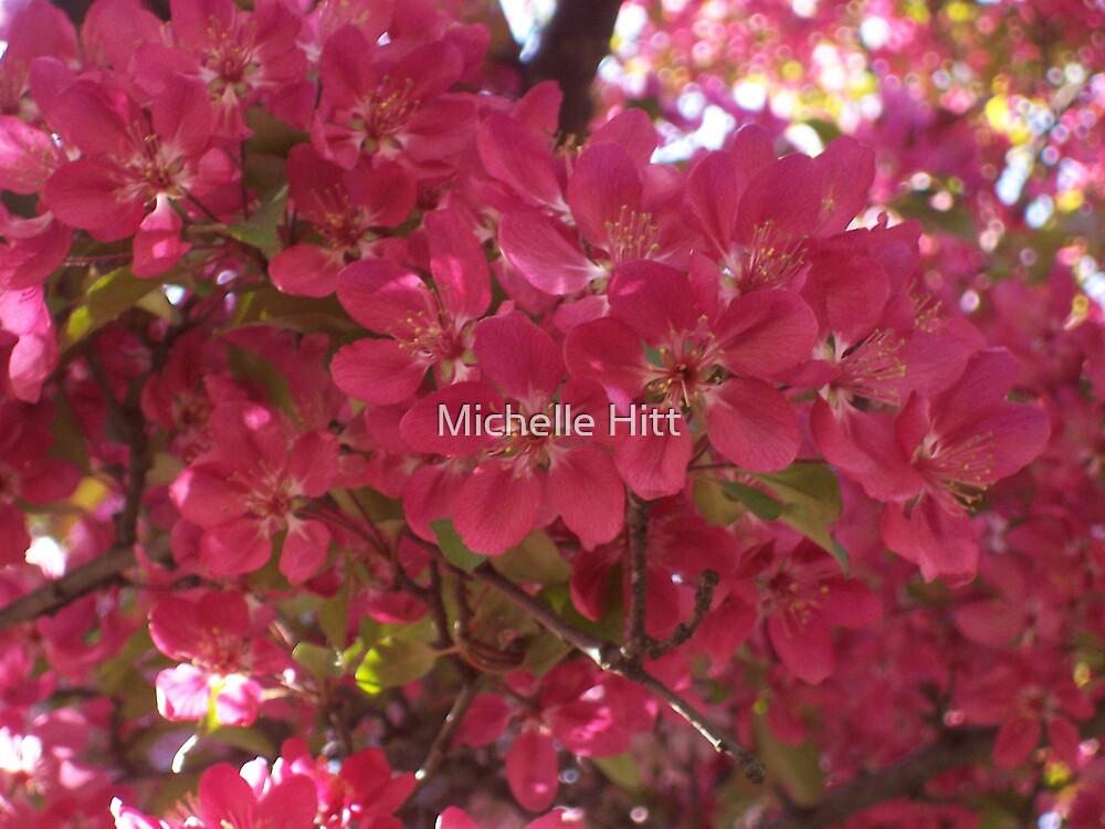 Spring Flowers by Michelle Hitt