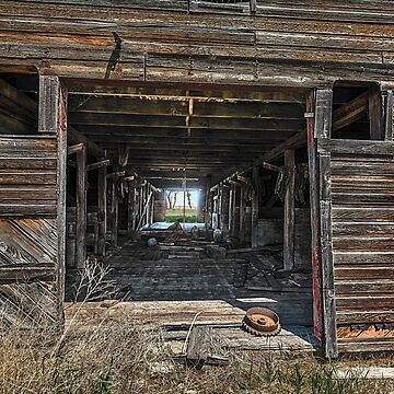 Missing Horses by TheKav