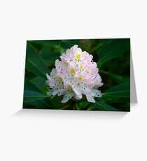 Great Rhododendron Greeting Card
