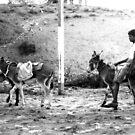 Donkey Boy by ShootingSardar