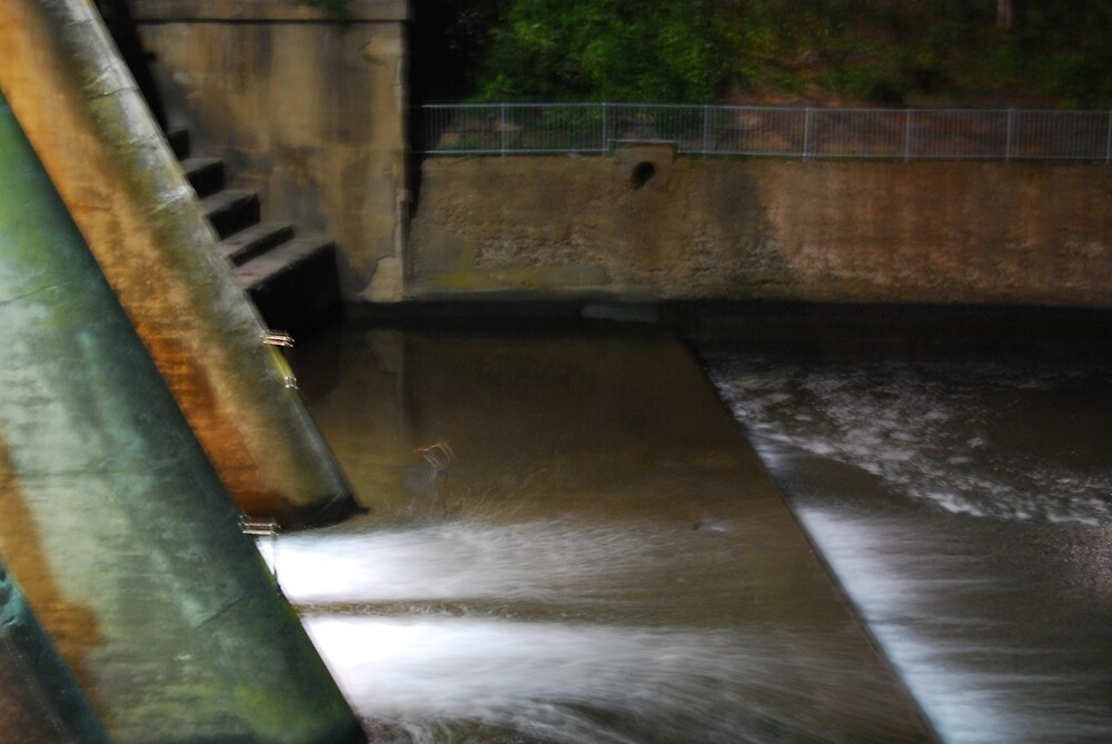 Weir by Princessbren2006