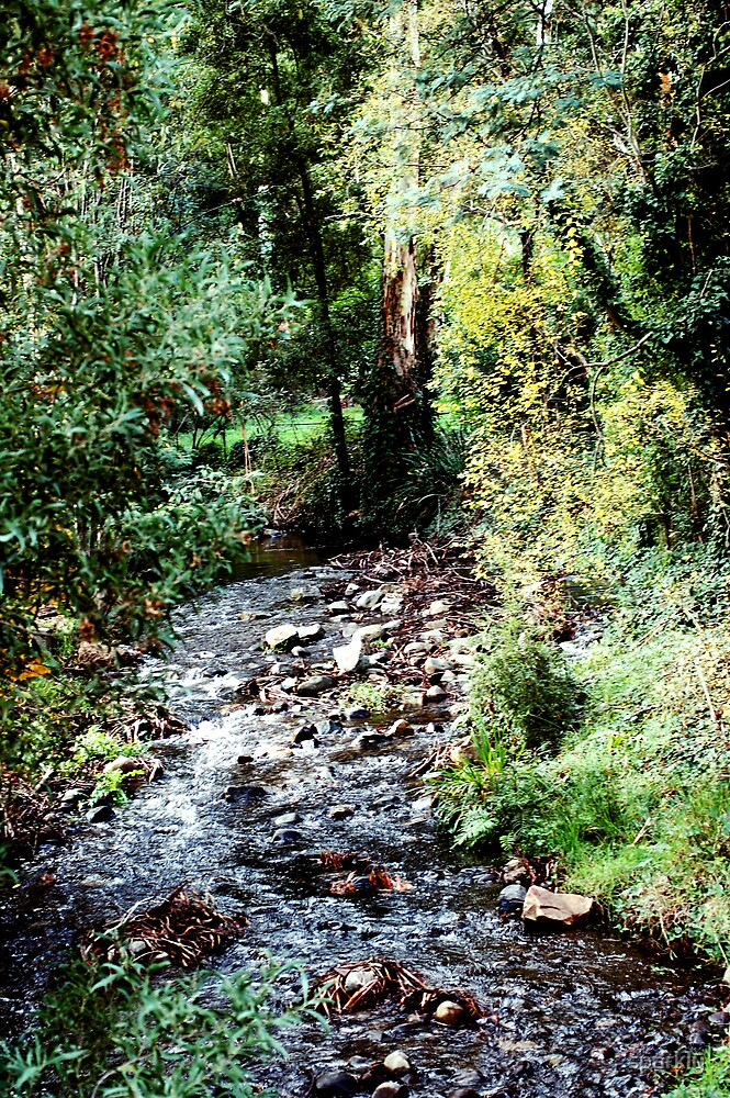 badger creek by sparkly