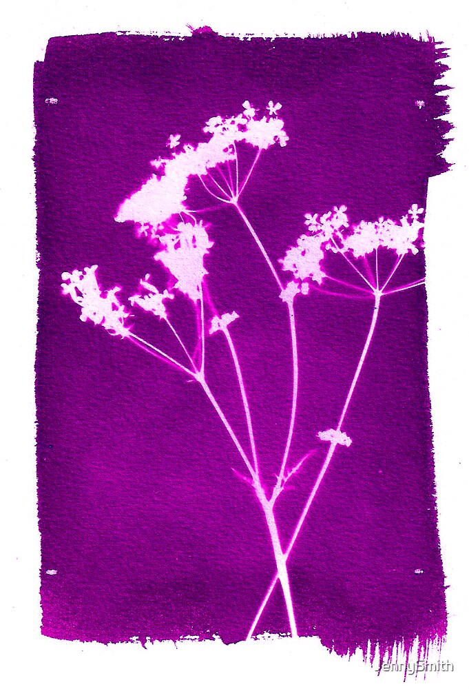 purple photogram by JennySmith