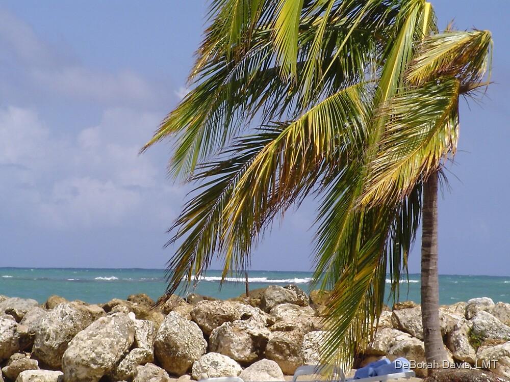Jamaica Breeze  by DeBorah Davis, LMT