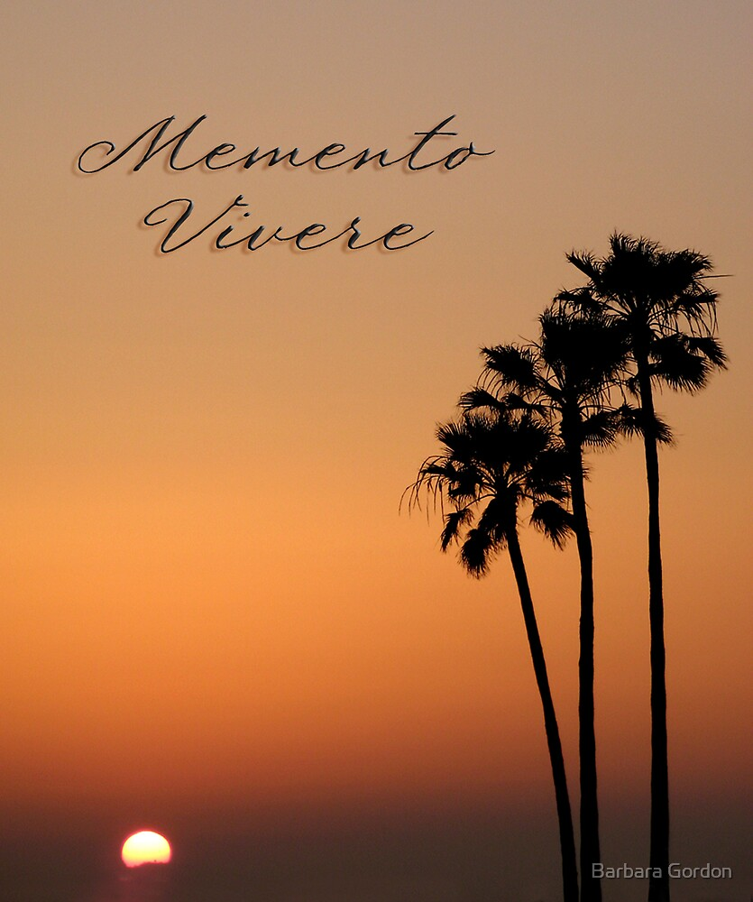 Three Palm Sunset - Memento Vivere by Barbara Gordon