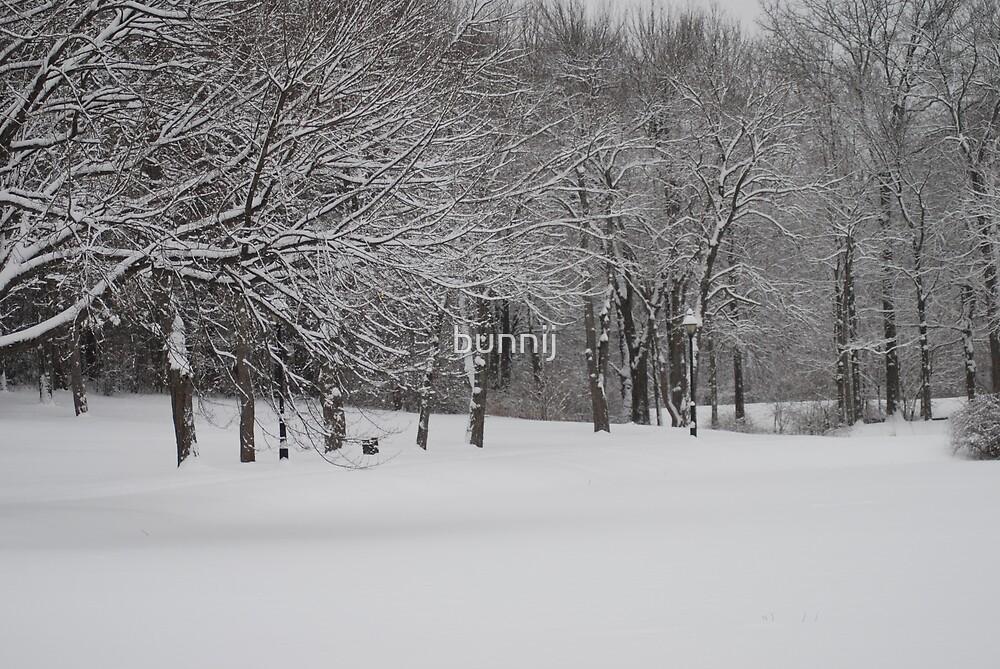 Winter Light by bunnij