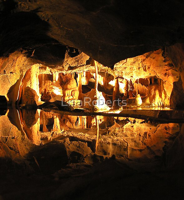 Cox's Cave, Cheddar, England  by LisaRoberts