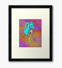 pony Framed Print