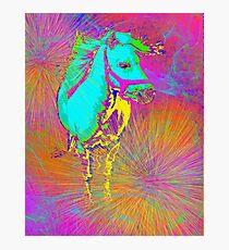 pony Photographic Print