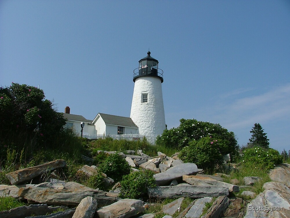 Pemaquid Point Light by Scott Syster