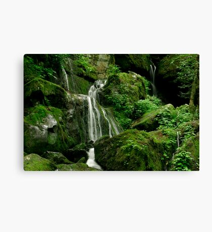 Place of a Thousand Drips Canvas Print