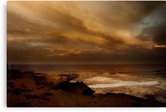 Portsea Beauty by Samantha Cole-Surjan