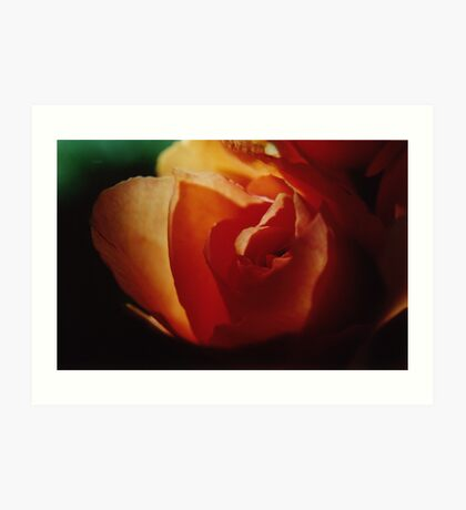 rose-gold Art Print