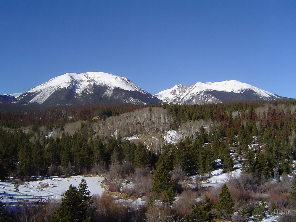 VAIL CO. by Dyan
