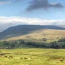 A Wensleydale Panorama by Jamie  Green
