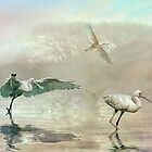 Spoonbill morning by Tarrby