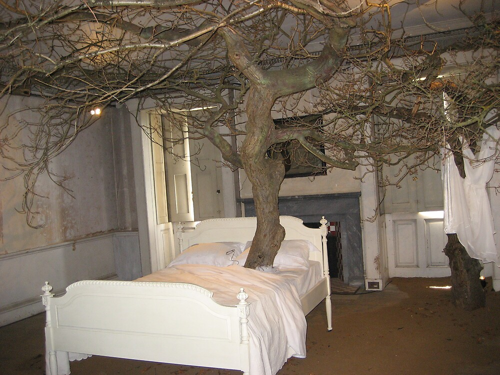 Tree in a Bed  by shelagh1312