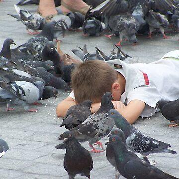 Pigeons... by stetoye