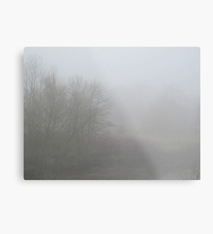 Image one hundred and fifty seven Metal Print