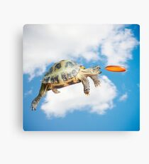 Funny Frisbee Catching Turtle Canvas Print