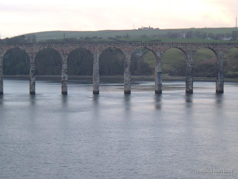 bridge by melissa harrison