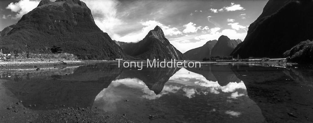 Milford Sound - Fiordland NZ by Tony Middleton