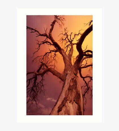 apocalyptic tree Art Print