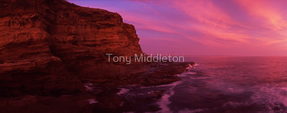 divine light by Tony Middleton
