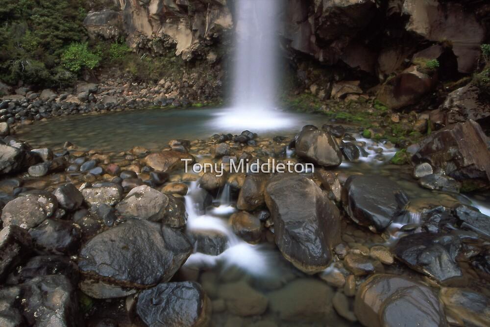 Taranaki falls - NZ by Tony Middleton