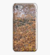 Image one hundred and sixty seven iPhone Case/Skin