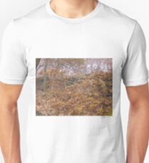 Image one hundred and sixty seven T-Shirt
