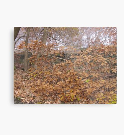 Image one hundred and sixty seven Metal Print