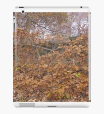 Image one hundred and sixty seven iPad Case/Skin