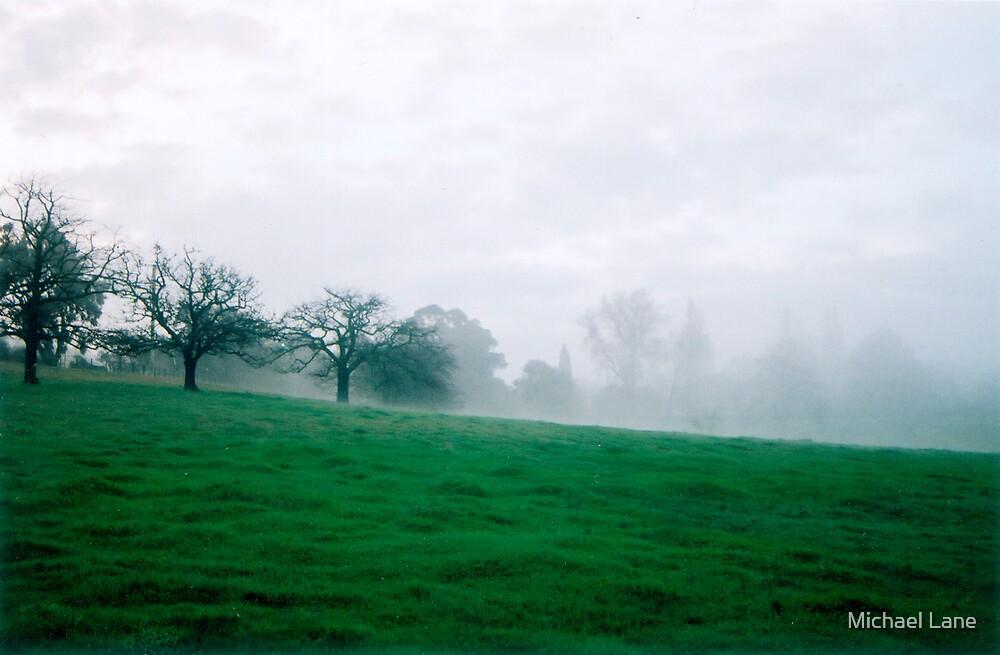 Winter Field by Michael Lane