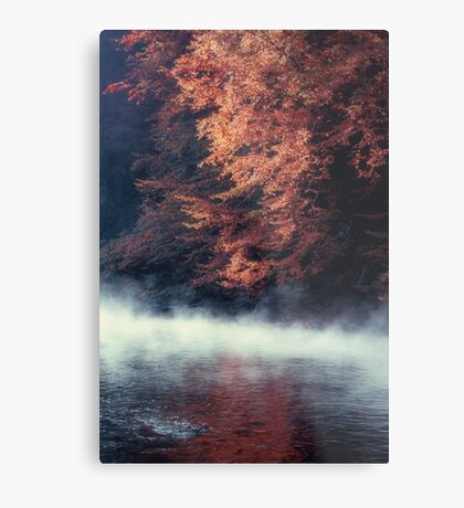Nature*s Mirror - Fall at the River Metal Print