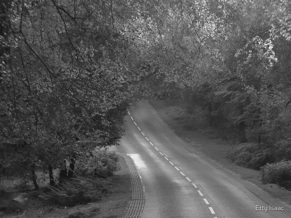 hidden path by Etty Baruch