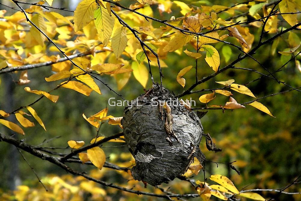 Hornet's Nest II by Gary L   Suddath