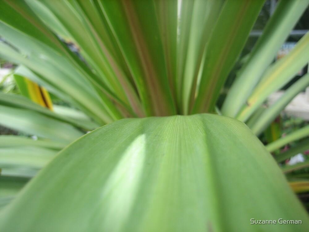green slide by Suzanne German