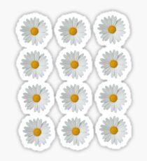 daisy sticker pack  Sticker