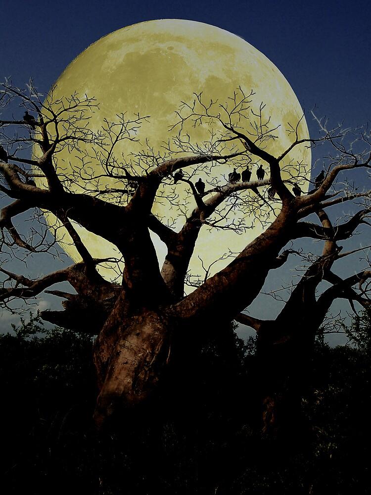 Serengeti by dduhaime55