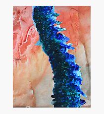 Watercolour Spine Photographic Print