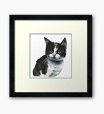 Black and White Kitten Drawing Framed Print