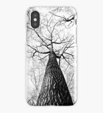 Forest from down iPhone Case/Skin
